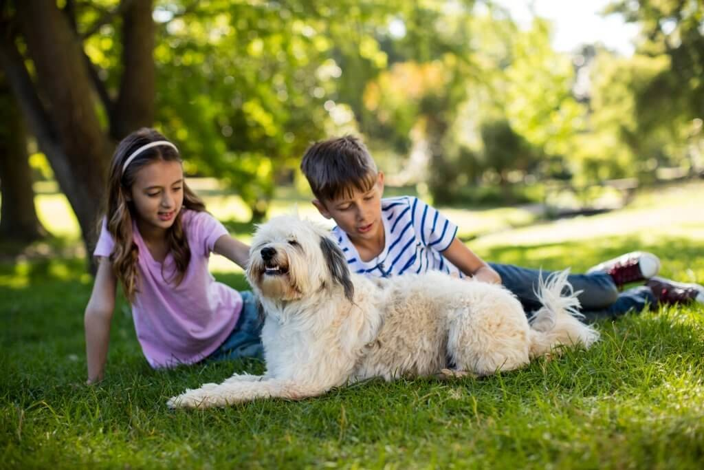 boy-and-girl-with-dog-in-park